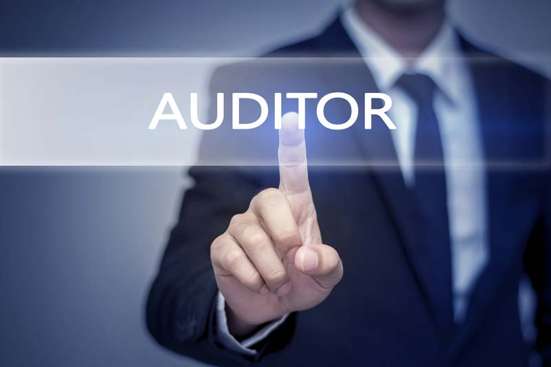 The Internal Audit Overview